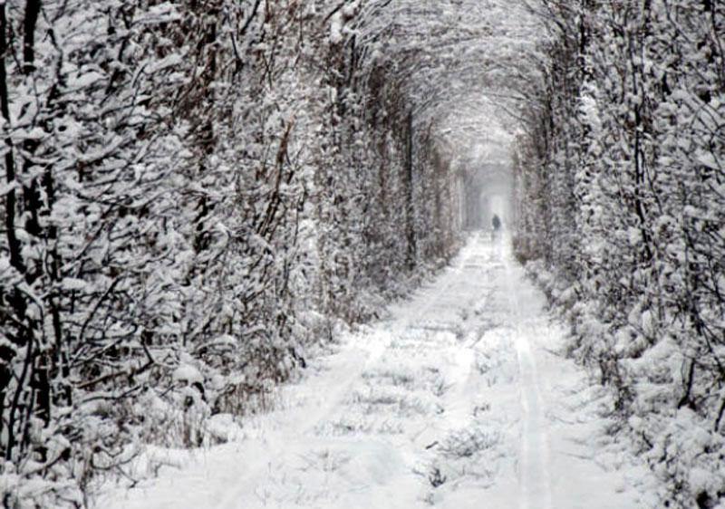 Дорога в казковий світ