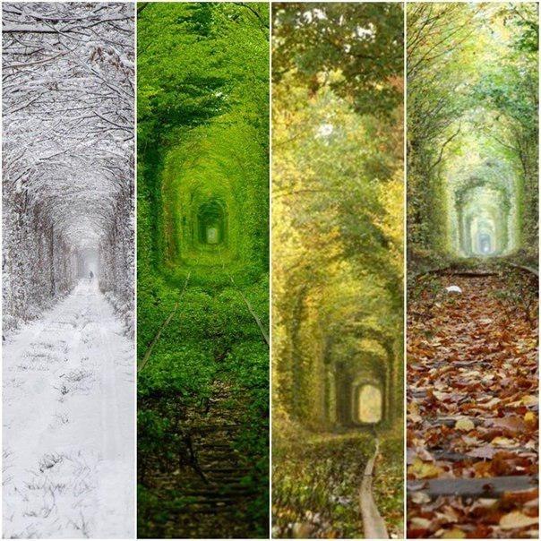 Тунель кохання в різні пори року
